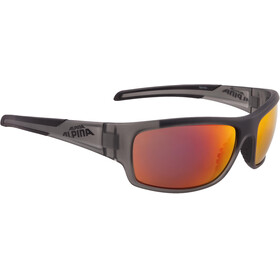 Alpina Testido Glasses anthracite matt-black
